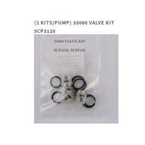 Cat Pumps 33060 Valve Kit for - 5CP3120 Pump